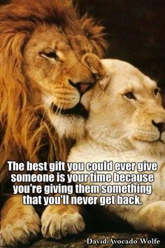 Isn&Apos;T it ironic quotes quotes, lion quotes и lioness quotes Lion And Lioness, Lion Of Judah, Animals And Pets, Baby Animals, Cute Animals, Lion Pictures, Animal Pictures, Lioness Quotes, Lion Love