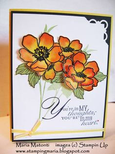 Fabulous Florets Reinker Card by stampingmaria - Cards and Paper Crafts at Splitcoaststampers