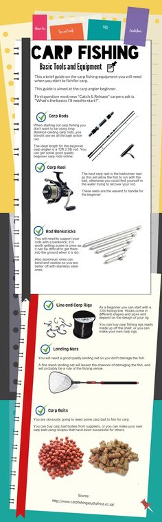 Carp fishing for beginners, basic tools and equipment. This infographic shows all the basics.