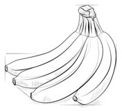 How to draw a bunch of bananas Drawing tutorial