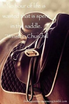 The most important role of equestrian clothing is for security Although horses can be trained they can be unforeseeable when provoked. Riders are susceptible while riding and handling horses, espec… Pretty Horses, Horse Love, Beautiful Horses, English Riding, Horse Quotes, Horse Pictures, Equine Photography, Equestrian Style, Equestrian Quotes