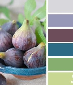 fig hues - I like the balance of greens with the purples, plus the pop of blue!