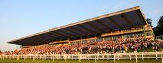 Sandown Park Horse Racecourse