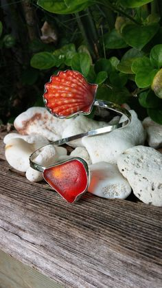 MADE with YOUR SHELLS, Sunrise Shell, Sea Glass Cuff, Sunrise Shell Jewelry, Sunrise Shell Cuff, Sunrise Shell Necklace