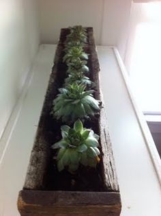 upcycled rain gutter planter with wick watering system