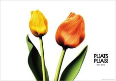 Flowers by PLEATS PLEASE ISSEY MIYAKE_2