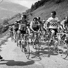 """Un día como hoy, hace 107 años, el 13 de mayo de 1909, comenzó el primer giro de Italia. El recorrido de 2.448 km constaba de 8 etapas entre el """"rondeau"""" de Loreto y Milán con numerosas ascensiones. 115 ciclistas comenzaron el recorrido a las 02:53 de la mañana, pero solo 49 cruzaron la línea de meta. #bicicleta #ciclismo #carrera #bicis #giro #ciclismo #italia #competición #giro http://www.pandabuzz.com/es/un-dia-como-hoy/el-primer-giro-italia"""