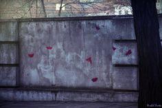 Street Art w KRK KResKi - różowe owady Kraków, ul. Podgórska Check-in »> do...