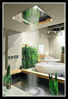 you DEFINITELY need a living wall and a waterfall!