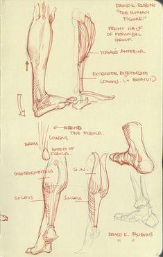 Mari Arakaki est un jeune illustrateur qui vit en Californie aux Etats Unis. En quelques planches il va vous montrer comment dessiner l'anatomie humaine. Moi qui fait un peu de dessin, il y a toujours certaines parties où j'ai vraiment du mal, comme les mains et les pieds par exemple. Vous allez vo…                                                                                                                                                                                 Plus