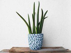 Ronja offre à ses #plantes une nouvelle décoration et recouvre les pots avec ces cache-pots en pull #recyclé. Selon la pièce où se trouve le pot, la saison ou la plante, elle adapte le cache-pot. Une idée tout simplement géniale ! #upcycling