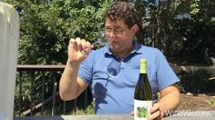 2013 Viñas Del Vero La Miranda de Secastilla Garnacha Blanca Somontano Spain White Wine  http://gonzalezbyassuk.com/our-brands/vinas-del-vero/vinas-del-vero-secastilla-range/  https://www.instagram.com/wineweirdos/