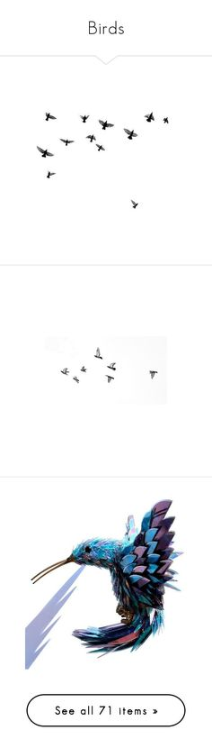 """""""Birds"""" by melody-renfro-goldsberry ❤ liked on Polyvore featuring fillers, backgrounds, birds, animals, drawings, doodles, effects, text, quotes and details"""