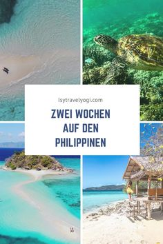 Beautiful Places To Travel, Cool Places To Visit, Places To Go, Palawan, Philippines Travel, Travel Inspiration, Travel Ideas, Travel Tips, Trip Planning