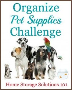 This week's challenge, as part of the 52 Week Organized Home Challenge on Home Storage Solutions 101, is to organize pet supplies, from food, toys and more, with step by step instructions.