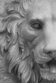 """Infra Red Lion"" by Oscar Aguilar Sculpture Head, Lion Sculpture, Family Canvas, Art Terms, Lion Art, Framing Photography, Animal Sculptures, Art Deco Design, Photo Canvas"