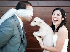 Funny Wedding Photos of the bride and groom
