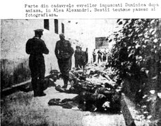 Romania, Corpses of Jews shot in Alexandri street. Belongs to collection: Yad Vashem Photo Archive