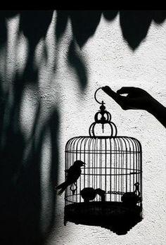 Shadow #bw #BlackandWhite