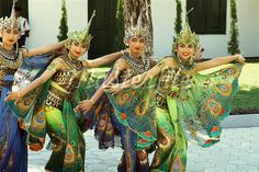 Indonesia; they look like butterflies!
