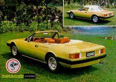 ADAMO GTM A carroceria lembrava a Ferrari 308 GT, faróis escamoteáveis, lanternas do Alfa Romeo 2300 Ti, no painel alguns instrumentos como conta-giros e manômetro de óleo e os interruptores do Fiat 147, um Frankstein que ficou bem montado, só acomodavam duas pessoas, este foi o carro criado por Milton Adamo.
