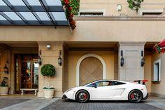 Lamborghini Gallardo Super Trofeo   | Drive a Lambo @ http://www.globalracingschools.com