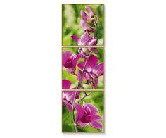 Orchideeëntak - schilderen op nummer - 40 x 120 cm - Schipper