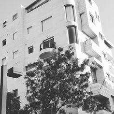 Bauhaus Tel Aviv, Bauhaus
