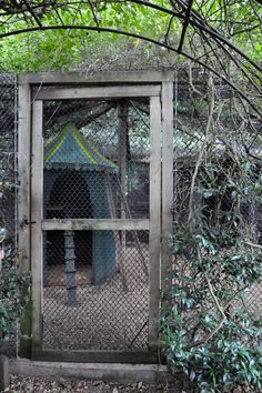 Entry to chicken coop