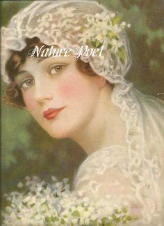 Tela de novia hermosa 1915 bloque 5 x 7 pulgadas por naturepoet
