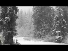 ENYA - *SPECIAL CHRISTMAS ALBUM* 2014