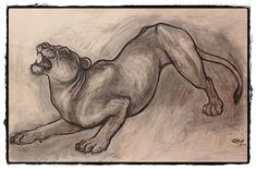 25 belos desenhos de animais para a sua inspiração 15