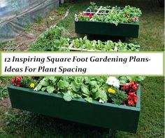 12 Inspiring Square Foot Gardening Plans-Ideas For Plant Spacing | The Self-Sufficient Living