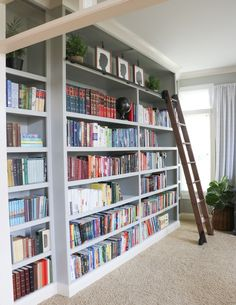 Wall of bookcases with ladder in office