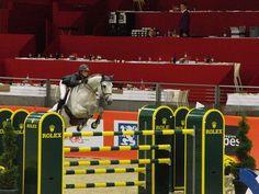 Les chevaux de sports - Mylord Carthago - Mylord Carthago et Pénélope Leprevost au CSIW 5 étoiles Prix Equidia à Equita Lyon en 2010