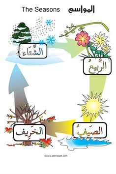 This beautifully illustrated poster will help your students recall the Arabic names for the four seasons of the year. It is double-sided, so it also serves as a do-it-yourself flashcard set as well, with easy-to-follow guidelines on the back .