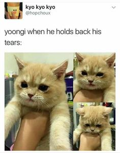 I Can't ... gosh even imagining Yoongi with his teary eye .... He is spook Cutteeee OMG