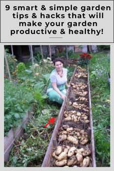 IDEAS ON how to start a garden from scratch YOU SHOULD TRY Vegetable Garden Tips, Starting A Vegetable Garden, Gardening For Beginners, Gardening Tips, Easy Garden, Garden Ideas, Meteor Garden 2018, Garden Maintenance, Small Backyard Landscaping