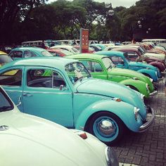 Fusca, Rusted Live, Cwb 2013. Personal favourite gorgeous Classic VW Beetles so pretty :) #beetle #vw www.cardeck.co.uk