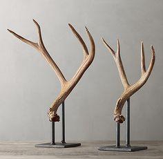 Natural Deer Antler on Stand Deer Horns Decor, Painted Deer Antlers, Stag Antlers, Stag Head, Deer Antler Crafts, Antler Art, Antler Lights, Antler Mount, European Mount