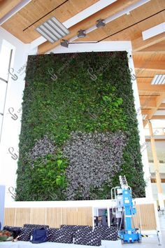 Fixed Living Walls - Urban Planters Urban Planters, Living Walls, Live Plants, Wall Spaces, Indoor, Interior, Outdoor Decor, Green, Design