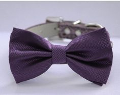 Purple wedding dog collar,  Dog Bow tie attach to high quality leather collar, Wedding accessory, Xlarge dog collar by LADogStore on Etsy https://www.etsy.com/listing/111971572/purple-wedding-dog-collar-dog-bow-tie