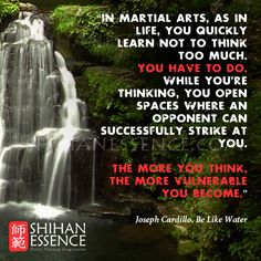 In martial arts, as in life, you quickly learn not to think too much. You have to do. While you're thinking, you open spaces where an opponent can successfully strike at you. The more you think, the more vulnerable you become. JOSEPH CARDILLO, Be Like Water