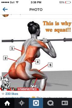 This is why we squat!