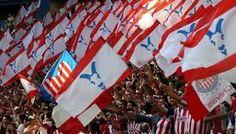 Image result for CHIVAS GUADALAJARA futbol supporters