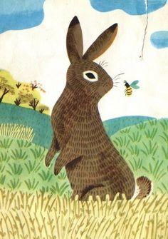 JP Miller- bunny