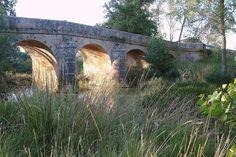 Puente Canto. Castrillo de Villavega (Palencia)