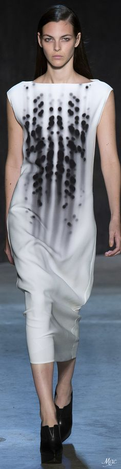 Spring 2017 Ready-to-Wear Narciso Rodririguez