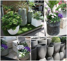 Ideas for pots for a grey & white garden design