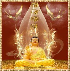 Cantinho de Imagens da Guerreira: Buda
